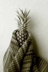 Warming a cold soul (overthemoon) Tags: home balcony pineapple blanket knitting warm wrapped nurture ip ironphotographer 88 utata:project=ip88 portrait wool sepia