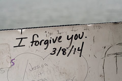 Found Things //.2 (Theresa Best) Tags: lake sorry word photography graffiti visions geneva quote best theresa sprouting lakegeneva forgiveness forgive theresabest sproutingvisions