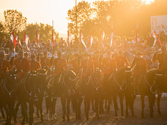 Attention (unDaily Power) Tags: light sunset horses horse sun sunlight ontario canada golden haze cops bright ottawa police olympus riding hour mounted rcmp setting horseback goldenhour omd mounties officers royalcanadianmountedpolice m43 mft flickrfriday sunsetceremonies microfourthirds olympus40150mmf456 omdem5