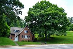 The Big Oak (NC Mountain Man) Tags: road building tree oak nikon lawn d3200 ncmountainman phixe