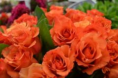 Colors_Paris May 2014 (katutxu) Tags: orange flower rose flor rosa bouquet naranja