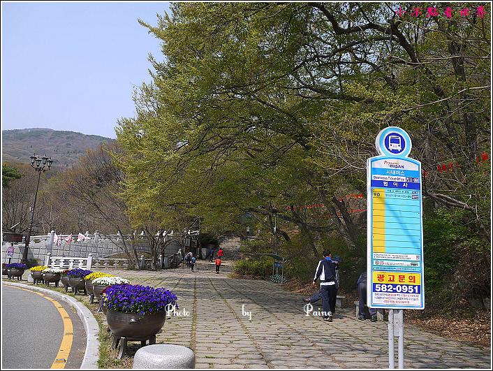 釜山梵魚寺 (6).JPG