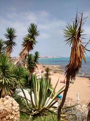 2014-06-08_09-34-13 (pelz) Tags: mar playa alicante mediterrneo torrevieja motog