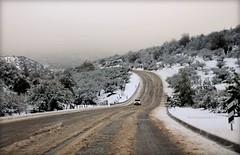 BIENVENIDO GENERAL INVIERNO (Pablo C.M || BANCOIMAGENES.CL) Tags: chile santiago snow nieve otoo invierno colina lobarnechea reginmetropolitana caminopiedraroja