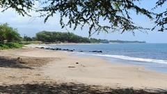 beaches of maui, hi (hannu & hannele) Tags: ocean trees beach n