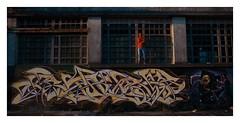 RIP SKILL (iaM_Rosales) Tags: winter art robert argentina graffiti buenosaires nikon mural freestyle day arte robe graf rip free style dia colores invierno junio sombras skill fotografa oeste 2014 registro calvera hurlingham d90 af1s nikond90 grafittys