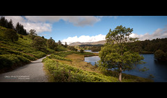 coniston-6 (D_M_J) Tags: old uk lake man canon landscape district lakedistrict shift panoramic cumbria tilt tarn stitched coniston tse hows hawkshead 1dsmkiii