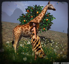 African Safari feat. Amarelo Manga (Will Blog for Faves! =D) Tags: zenith hellodave amarelomanga hucci designercircle theseasonsstory