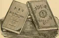 Anglų lietuvių žodynas. Ką reiškia žodis ABC-book lietuviškai?
