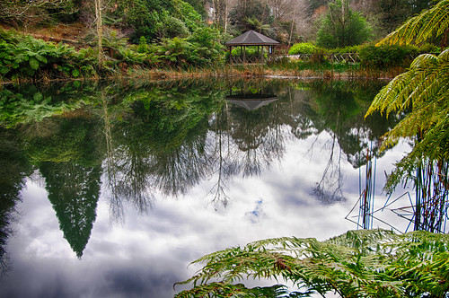 The big lake - National Rhododendron Gardens