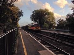 Colas Rail 56113 on the 6M51 Teigngrace-Briton Ferry Yard. (ash.ash749) Tags: light orange color reflection yellow train grid track br diesel loco locomotive freight britishrail grids freighttrain livery clag colas brel class56 56113 colasrail 637p