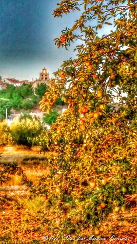 """Salinas del Manzano: Vista desde el puente del huerto de los pichones • <a style=""""font-size:0.8em;"""" href=""""http://www.flickr.com/photos/26679841@N00/14905617787/"""" target=""""_blank"""">View on Flickr</a>"""