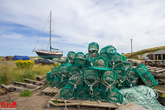 Berwick 5th Aug-53 (Richard Hayward Photography) Tags: uk portrait green net canon landscape manchester island photography eos boat photo ship photographer northwest image picture holy pot northumberland photograph richard lobster sail hd hayward hq holyisland lindisfarne lobsterpot rhp 600d theholyislandoflindisfarne canoneos600d richardhaywardphotography
