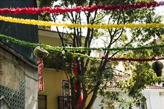Festa Lisboa (Bas Tempelman) Tags: street alley lisboa lisbon lissabon festa narrow garlands slingers guirlandas
