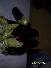 ()    (1) (dr.kattoub) Tags: stuffed         stuffedcarrot                 tammamkattoub drtammamkattoub