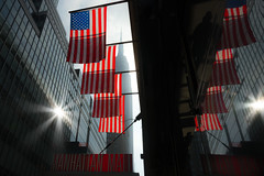 New York - Empire State Building and Flags