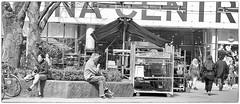 Seated close, apart. (Xerethra) Tags: bw 35mm geotagged spring nikon europa europe sweden candid skandinavien may streetphotography sverige scandinavia sollentuna maj vår svartvit eurpe 2013 stockholmslän nikond80 turebergstorg turebergstorgsollentunastockholmslänsverige