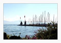 Morges classique (overthemoon) Tags: flowers blue lake mountains water schweiz switzerland suisse flags explore svizzera léman masts vaud morges 410 romandie