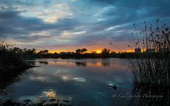 Stormy Sept sunset (cbjphoto) Tags: photography wildlife sanctuary sanjoaquin carljackson