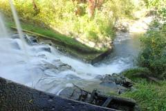 Toronto Zoo, Waterfall. (SNAPS