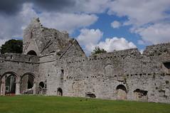 "Boyle Abbey (Gaeilge Bheo) Tags: ireland irish black church abbey photography photo cool ruins pretty images norman monks gaeilge connacht boyle nofilter facebook photooftheday connaught picoftheday linkedin art"" éire history"" day"" ""photo ""best twitter ""high ireland"" ""irish allshots ""pic bestoftheday ""tourist ""tourism cisterican ""visiting pinterest ""instagram instagramers instadaily igdaily instagood instamood instago ""fergal jennings"" res"" resolution"" ""sighseeing ireland"" ferghalj pintergy"