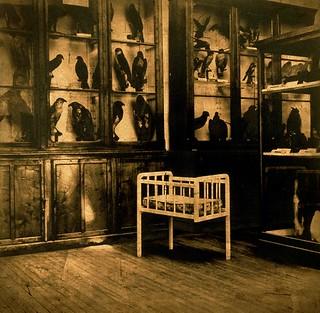Luis González Palma_No quería hablar de esos años_ de la Serie Jerarquías de la Intimidad (El Encuentro)__2004_Cortesía del artista