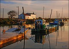 Marennes in Golden Morning Light (angelofruhr) Tags: supershot marennes france early morning boats