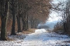 Nagykanizsa, Téli földút