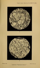 n590_w1150 (BioDivLibrary) Tags: geology periodicals smithsonianlibraries bhl:page=38636041 dc:identifier=httpbiodiversitylibraryorgpage38636041