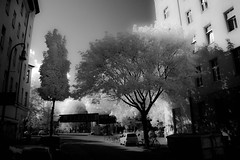 A quiet street in Berlin. (erglis_m (Mick)) Tags: street trees urban blackandwhite bw berlin contrast canon germany ir blackwhite interesting canoneos20d infrared streetscape urbanlandscape urbanlife digitalinfrared infraredfilter