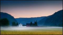 Tonight I am kind, tomorrow I'll take everything (Vardetangenfilm) Tags: norway fog night dew natt tåke dugg tonightiamkind tomorrowilltakeeverything