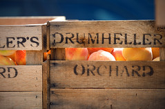 peach crate (Sky Noir) Tags: summer fruit photography box farm orchard fresh richmond drumheller va peaches crate skynoir