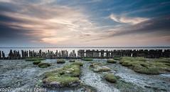 Sunset over the mud flats near Moddergat (Rijko) Tags: sunset waddenzee zonsondergang nederland mudflats friesland waddenkust paesensmoddergat moddergat paesens waddenzeekust mudflatscoast