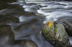 8 (1) (Ryan Gottsleben) Tags: longexposure stream ryan bloomington mn hdr ninemilecreek gottsleben