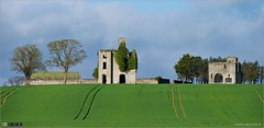 Rathcoffey Castle & Gatehouse