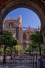 Puerta de la Concepcin y Patio de Los Naranjos - Catedral de Santa Mara de la Sede, Sevilla (Espaa) (Enrique Freire) Tags: spain murcia cartagena 34