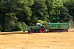 129A7457.jpg (Fotos aus OWL) Tags: landwirtschaft lexion drechen