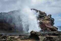 Maui-246 (Photography by Brian Lauer) Tags: ocean maui nakalele nakaleleblowhole nakalelepoint