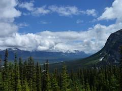 Hiking from Lake Louise via Mirror Lake to Lake Agnes and back, Banff National Park, Alberta, Canada (Loeffle) Tags: canada nationalpark hiking hike alberta lakelouise wandern kanada banffnationalpark wanderung canadianrockies 062014