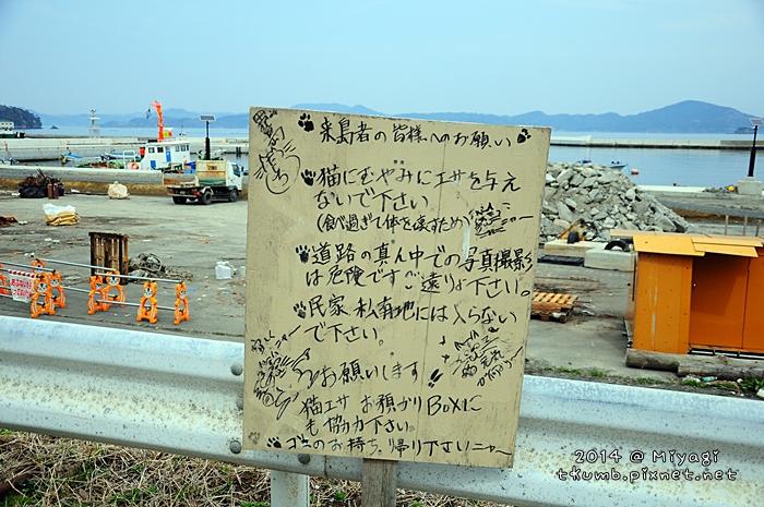 2014田代島25.jpg