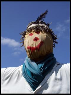 Asha Scarecrow