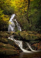 Autumn glory (Sapna Reddy Photography) Tags: longexposure autumn fall water colors leaves river flow waterfall nikon stream foliage tennesse smokies