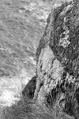 rock, cliff, grasses, ocean, Monhegan, Maine, nikon D40, nikon nikkor 105mm f-4, 9.9.14 (steve aimone) Tags: ocean blackandwhite cliff monochrome nikon rocks maine monochromatic whitehead grasses nikkor tone f4 monhegan seacoast grays 105mm monheganisland primelens nikond40