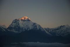 Burning the Peak |  (C.C. CHANG ) Tags: nepal cloud mountain snow sunrise trekking dawn peak glacier himalaya  annapurna  poonhill     hiunchuli