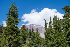 Mount Shasta View - Grey Butte - Shasta - Trinity National Forest - Siskiyou County - California - 17 August 2014 (goatlockerguns) Tags: california park county usa mountain mountains west nature forest grey woods butte natural pacific northwest hiking unitedstatesofamerica national trinity shasta siskiyou