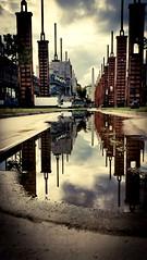 ...la verità è che i sogni sono immagini riflesse, sono specchio d'acqua immobile e svaniscono provandoli a toccare... (Connie.101) Tags: torino turin parcodora pozzanghera riflesso specchio mirror