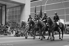 2017 Houston Rodeo Parade (burnt dirt) Tags: houston texas downtown city town mainstreet street sidewalk people person girl woman boy man group crowd spectator bw blackandwhite fujifilm xt1 horse flag rider saddle cowboy cowgirl parade houstonrodeoparade rodeoparade 2017 americanflag marineflag colorguard marines usmarines marinecorps streetphotography