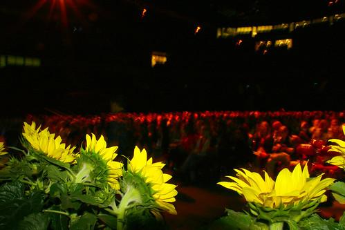Publik Nordiskt Forum Fredag