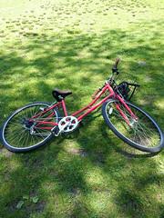 "365.158 ""like riding a bike"" (mintyfreshflavor) Tags: newyork bike bicycle centralpark manhattan 365 365days"