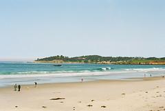 A Carmel beach morning / Nikon FM2n (ho_hokus) Tags: california ca beach dogs sunshine 35mm walking coast spring nikon scenery shore 35mmfilm carmel coastline pacificcoast carmelbythesea 2014 ektar fm2n 35mmcamera nikonfm2n kodakektar100 californiashore